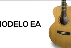 Electro Acoustic EA Model