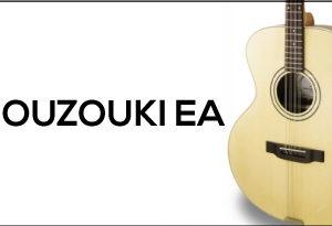 Bouzouki Eletro Acoustic EA