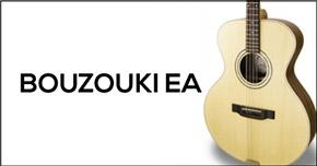 Eletro Acoustic EA